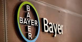 Minha expêriencia no Programa de Estágio Institucional Bayer 2019.