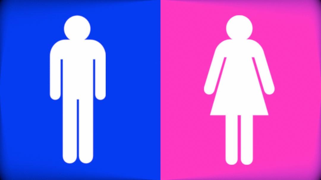 Cor não tem gênero
