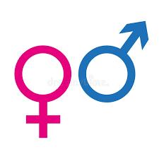 Google é menino ou menina?