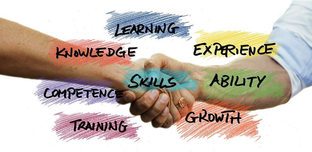 Processo Seletivos: soft skills e aprendizados