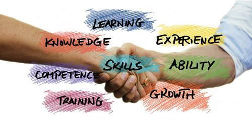 Habilidades Comportamentais: Diferenças, conceitos, insights...