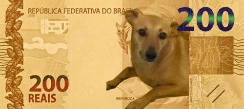 Nota de 200 reais: dos memes a inflação