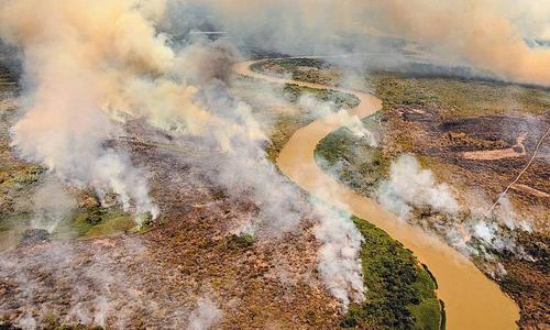 O que está acontecendo com o Pantanal?